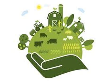 Animal farm knowledge is power essay